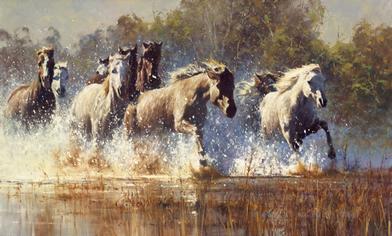 Brumby Crossing by Robert Hagan